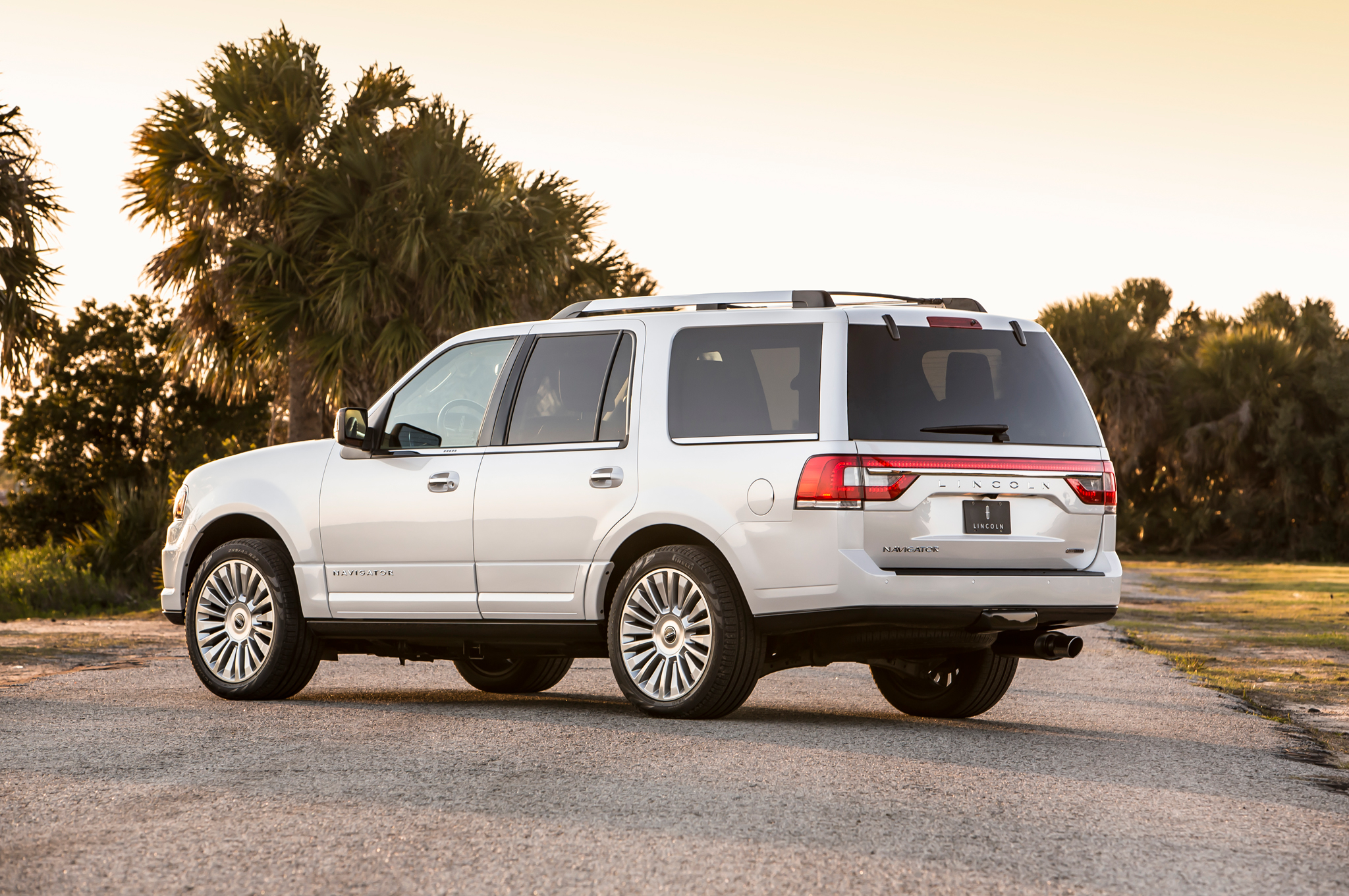 2015 Lincoln Navigator Rear Side Posing