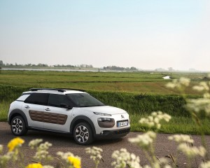 2015 Citroen C4 Cactus Model