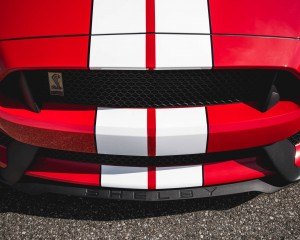 2016 Ford Mustang Shelby GT350 Exterior Grille