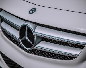 2014 Mercedes-Benz B-Class Exterior Grille
