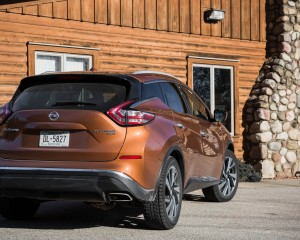 2015 Nissan Murano Platinum AWD Exterior Rear and Side