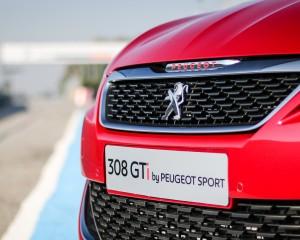2016 Peugeot 308 GTi Grille